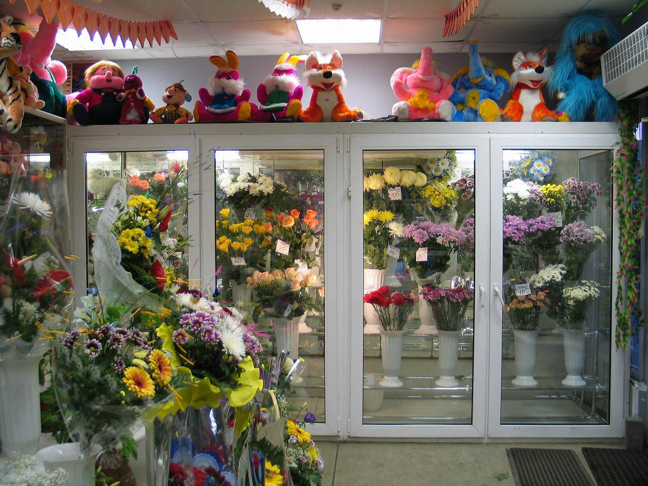 Холодильники для цветов фото цены